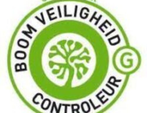 Boomveiligheidscontrole